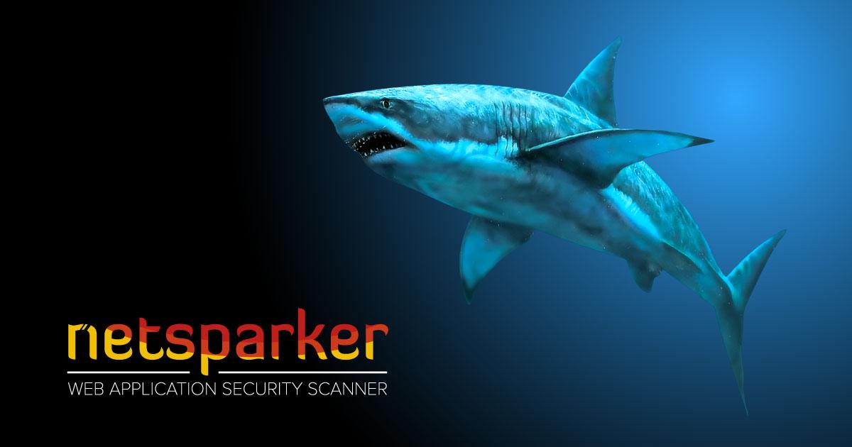 Netsparker'a Büyük Yatırım: 40 Milyon Dolar