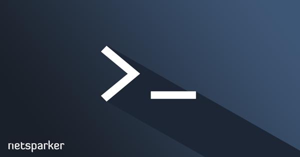 Netsparker Desktop Komut Satırı Arabirimi ve Argümanları
